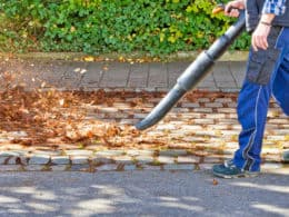 Best Commercial Backpack Leaf Blower
