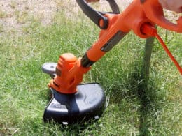 Best Cordless Weed Trimmer