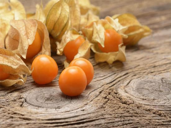 Ground cherries are easy to clean from their husks
