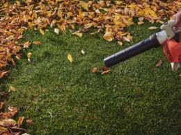 Highest CFM Leaf Blower