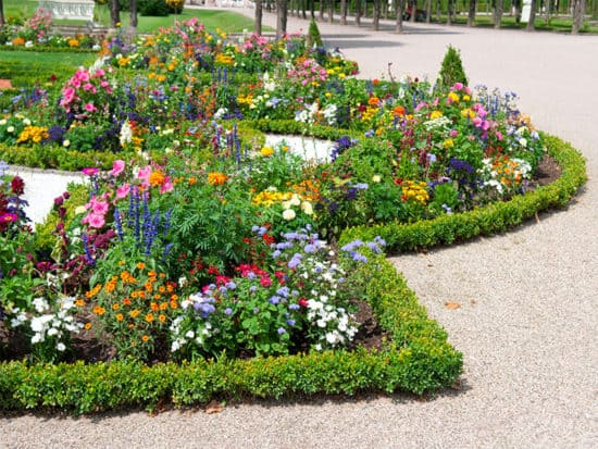 Star shaped flower bed