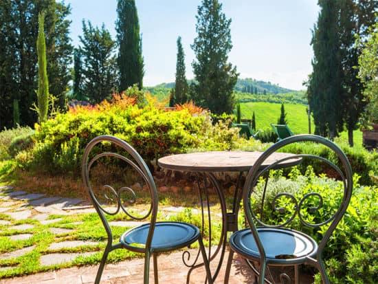 Tall italian cypress makes a charming garden