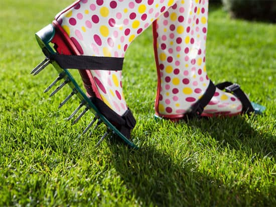 Woman wearing spiked lawn revitalizing aerating